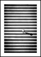 Crossing Stripes Affiche