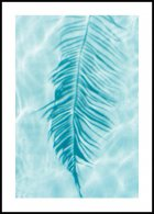 Palm Leaf Reflection, Poster
