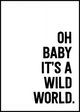 Oh Baby It's A Wild World, Affiche