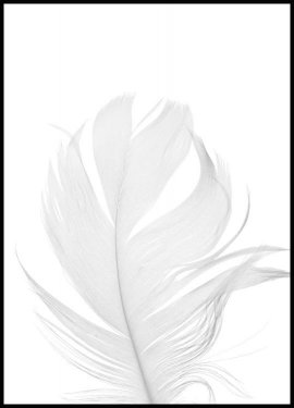 White Feather, Poster