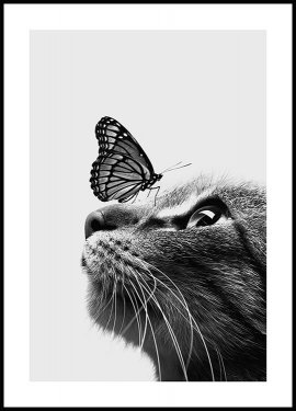 Chat et Papillon, Affiche
