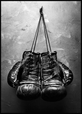 Boxing Gloves, Poster