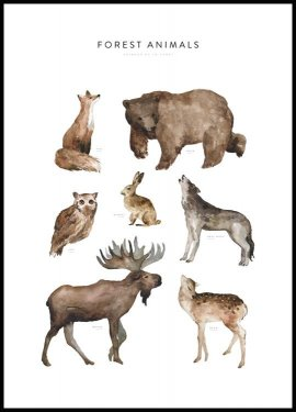 Forest Animals, Poster
