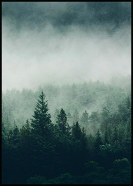 Tree Top Fog, Poster