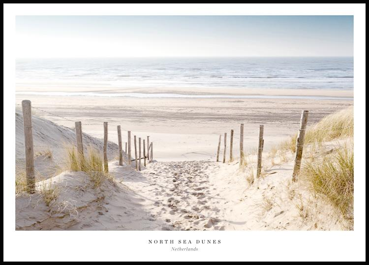 North Sea Dunes, Poster