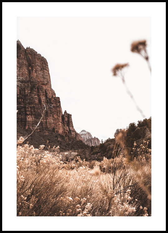 Parc national de Zion Poster
