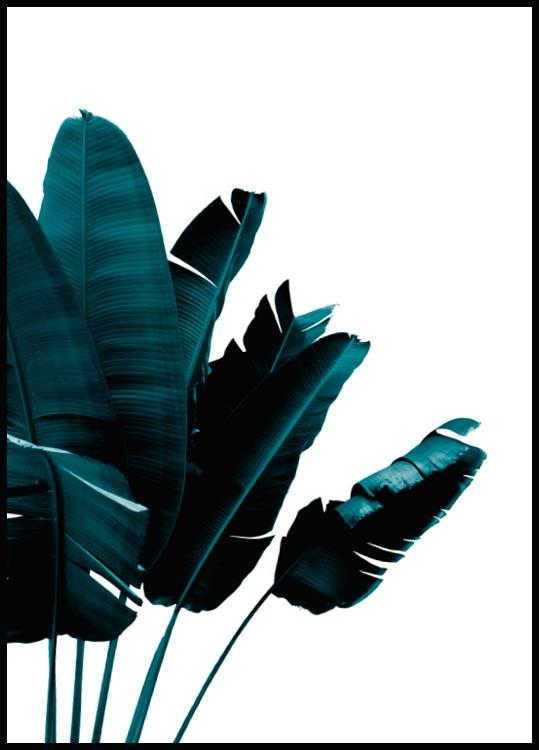 Green Banana Leaves, Poster